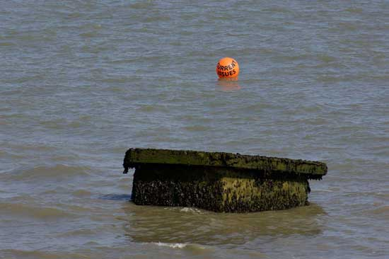 lost on the beach (buoy)